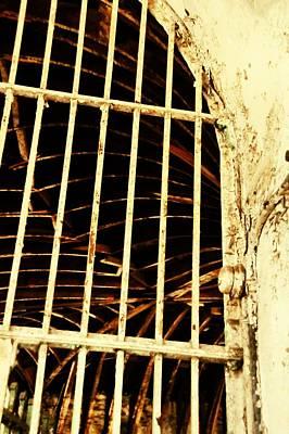 Window Photograph - Jail Bird by JAMART Photography