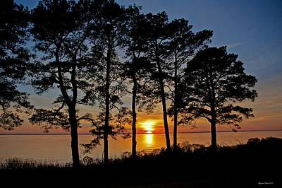 James River Sunset Print by Suzanne Stout
