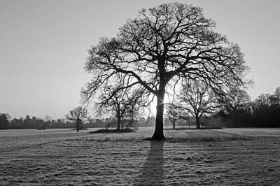 Maidenhead Photograph - January Sunday Morning by Tony Murtagh