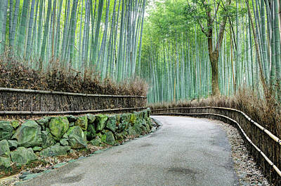 Bamboo Fence Photograph - Japan, Kyoto Road by Jaynes Gallery