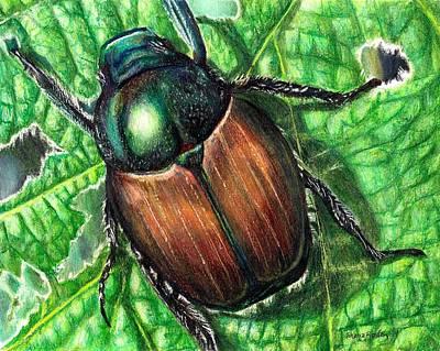 Beetle Drawing - Japanese Beetle by Shana Rowe Jackson