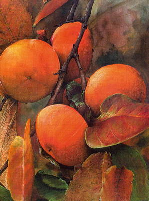 Japanese Persimmon Print by John Christopher Bradley