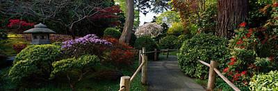 Tea Garden Photograph - Japanese Tea Garden, San Francisco by Panoramic Images