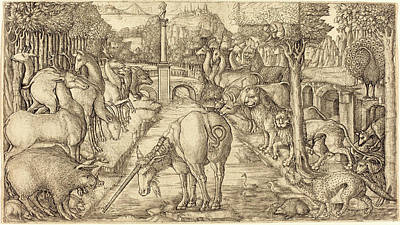 Unicorn Drawing - Jean Duvet, French 1485-c. 1570, The Unicorn Purifies by Litz Collection