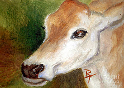 Brenda Brown Art Painting - Jersey Cow Aceo by Brenda Thour