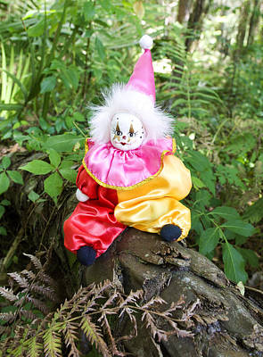 Dolls Photograph - Jester In The Forest by William Patrick