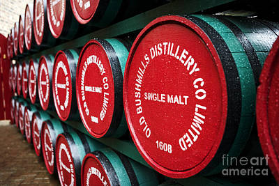 Rain Barrel Photograph - Joe Fox Fine Art - Single Malt Whiskey Barrels Of Old Bushmills Distillery Northern Ireland by Joe Fox