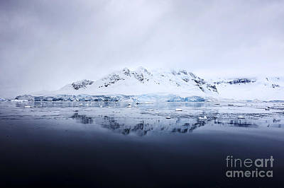 Fournier Photograph - Joe Fox Fine Art - Snow Covered Fournier Bay In Anvers Island Antarctica by Joe Fox
