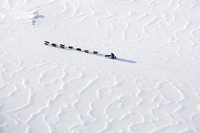 Dog Photograph - John Bakers Team Running Down Frozen Yukon River  by Jeff Schultz