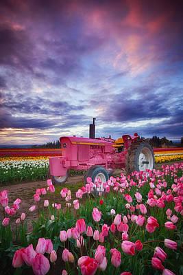 John Deere Pink Print by Darren  White