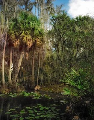 Joshua Creek Seminole County Florida Print by Chris  Kusik