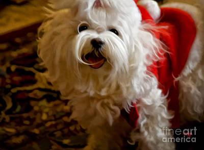 Pup Digital Art - Joy To The World by Lois Bryan