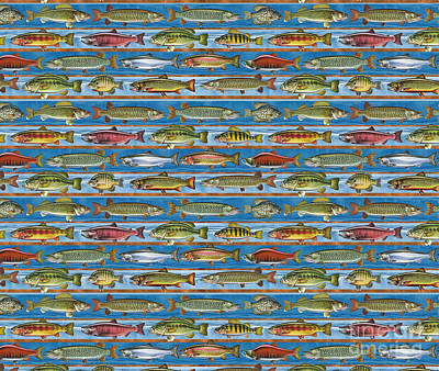 Jqw Fish Row Bedding Print by Jon Q Wright