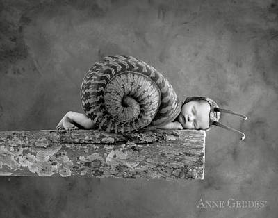 Snail Photograph - Julia Snail by Anne Geddes