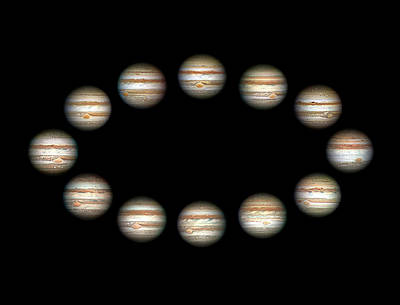 Jupiter During A Jovian Year Print by Damian Peach