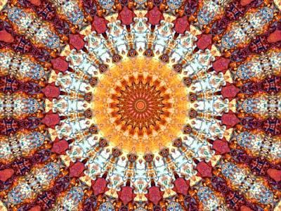 Camel Mixed Media - Kaleidoscope 5 by Tom Druin