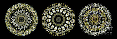 Mandala Photograph - Kaleidoscope Ernst Haeckl Sea Life Series Steampunk Feel Triptyc by Amy Cicconi