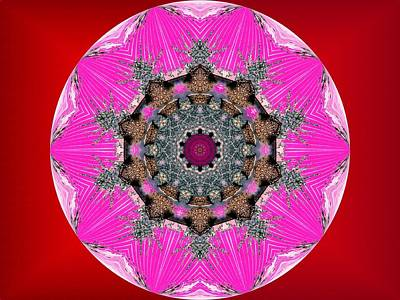 Kaleidoscope Print by Mike Breau