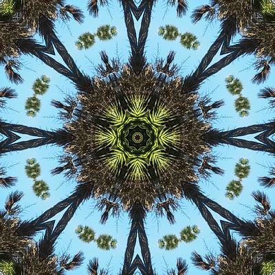 Kaleidoscope Palms Print by Cathy Lindsey