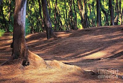 Keaau Photograph - Kaloli Point 2 by Ellen Cotton