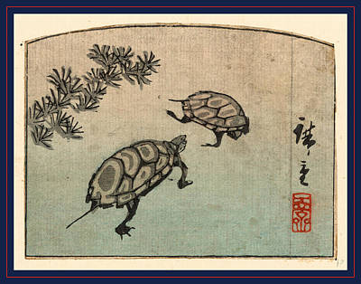 Kame, Turtles. Between 1848 And 1858, 1 Print  Woodcut Print by Utagawa Hiroshige Also And? Hiroshige (1797-1858), Japanese