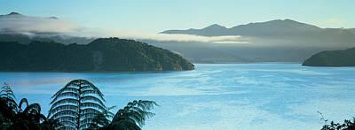 Kenepuru, Marlborough Sound, New Zealand Print by Panoramic Images