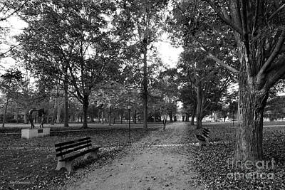 Kenyon College Middle Path Print by University Icons