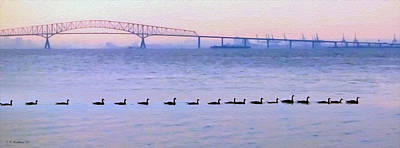 Key Bridge And Waterfowl Print by Brian Wallace