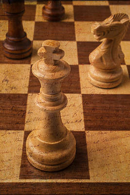 Knight Photograph - King Of Chess by Garry Gay