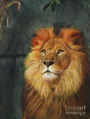 King Of Taronga - Watercolor Print by GD Rankin