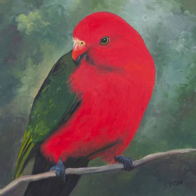 Parrot Art Painting - King Parrot  by Jan Matson