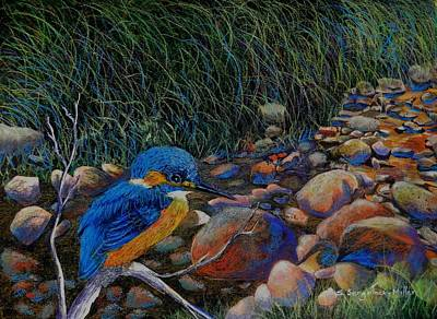 Kingfisher Mixed Media - Kingfisher Creek by Sandra Sengstock-Miller