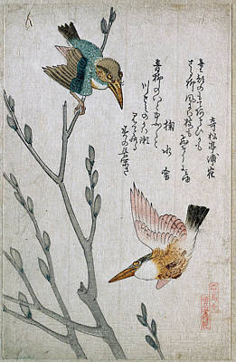 Kingfisher Drawing - Kingfishers And Pussy-willow by Kubo Shunman