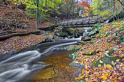 Waterfall Photograph - Kitchen Creek Ricketts Glen by Marcia Colelli