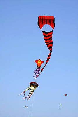 Mexican Fiesta Photograph - Kites Over Baja California by Christine Till