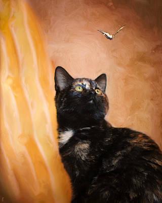 Kitten Photograph - Kitten And The Butterfly by Jai Johnson