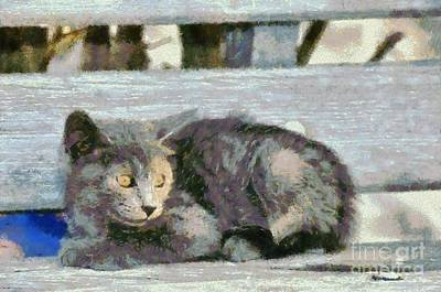 Benches Painting - Kitten On Bench by George Atsametakis