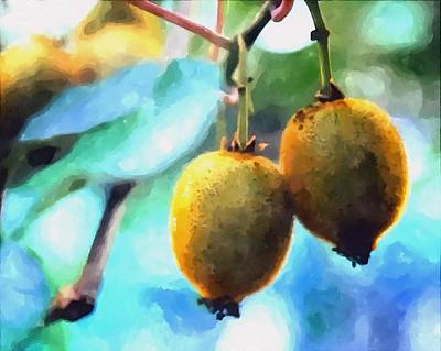 Agronomy Painting - Kiwi Fruit Ripening On A Tree by Lanjee Chee