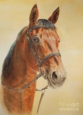 Kiwi- Jumping Horse Print by Dorota Zdunska