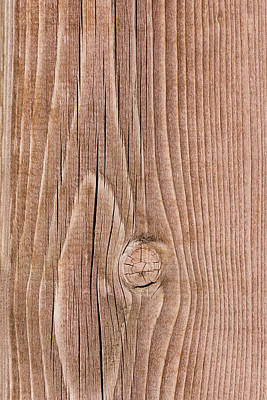 Knotty Wood - Featured 2 Print by Alexander Senin