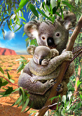 Koala Digital Art - Koala And Cub by Adrian Chesterman