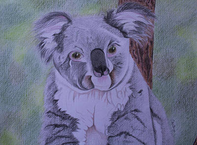 Koala Drawing - Koala by Carol De Bruyn