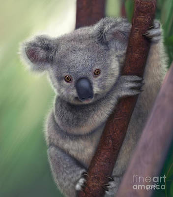Koala Art Digital Art - Koala by Gretchen Bartz