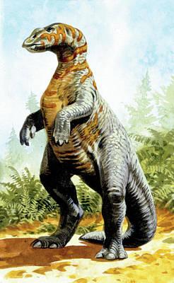 Dinosaur Photograph - Kritosaurus Dinosaur by Deagostini/uig