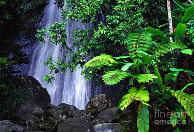 Tropical Rainforest Digital Art - La Coca Falls by Thomas R Fletcher