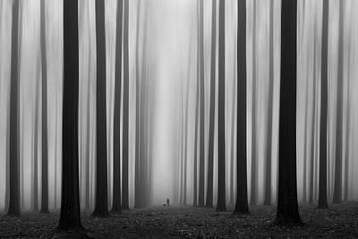 Labyrinth Print by Jochen Bongaerts
