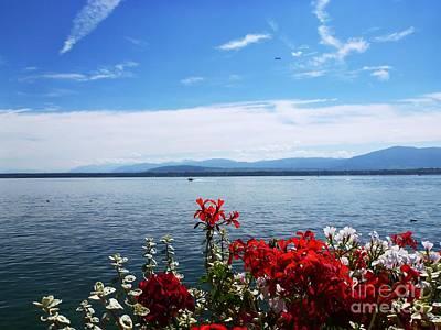 Geranium Photograph - Lac Leman - Switzerland by Cristina Stefan