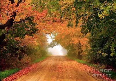 Autumn Photograph - Lady Autumn by Terri Gostola