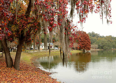 Ella Photograph - Lake Ella In Tallahassee by Carol Groenen