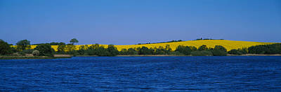 Lake In Front Of A Rape Field Print by Panoramic Images